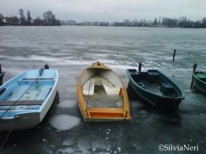 Lac d'Enghien 13 Febbraio 2012