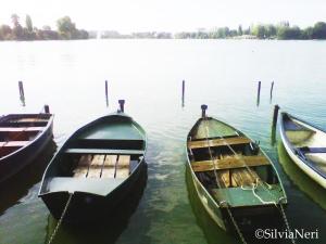 Lac d'Enghien 29 Agosto 2011 2