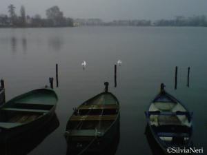 Lac d'Enghien 31 Gennaio 2012