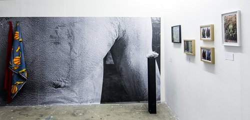 Exotica, Andrea Abbatangelo, Iheb Fehri, Khaled Razgallah, Cabinets de curiosités @Neri Contemporary Art 2019.jpg