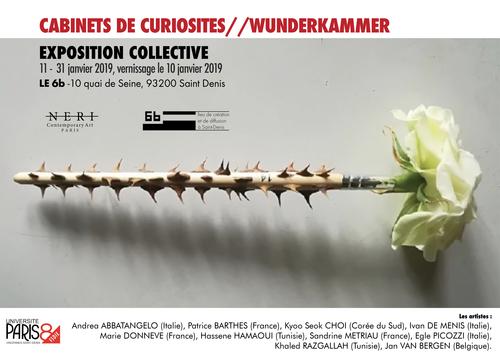CABINETS DE CURIOSITES - WUNDERKAMMER 2019.png
